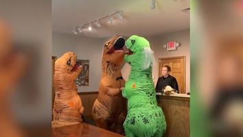 Pareja se casa disfrazada de dinosaurios y video se hace viral