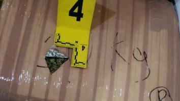 Decomisan 250 kilos de mariguana tras cateo en Montemorelos