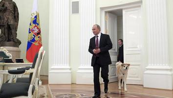 Putin dice que Rusia no expulsará a diplomáticos de EEUU