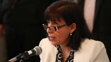 Morena contempla candidatos externos para contender por Nuevo León: Bertha Puga