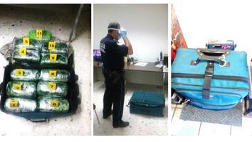 Decomisan droga en Terminal de Autobuses en Saltillo