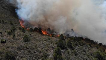 Combaten incendio forestal en Galeana, Nuevo León