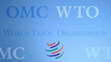 India y Sudáfrica presionan en la OMC por exención de derechos de fármacos y vacunas anti Covid-19