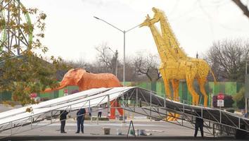 Ecologista cuestiona manejo financiero del zoológico La Pastora