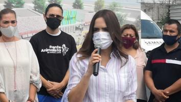Samuel y Adrián no deberían sorprenderse si ya se habían denunciado entre sí: Clara Luz