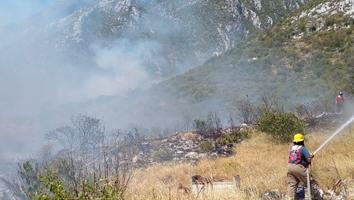 Se registra incendio tipo forestal en la parte baja del Cerro de las Mitras